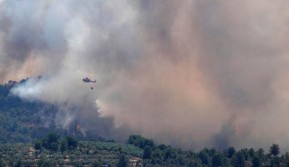 Limasolda yangın 2,5 kilometrelik alanı kül etti
