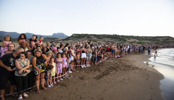 Yavru kaplumbağaların ilk adımlarını yüzlerce kişi izledi