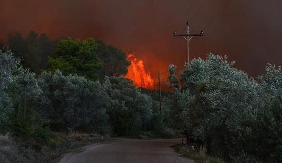 Yunanistan'da orman yangınları yerleşim yerlerini tehdit etmeye başladı