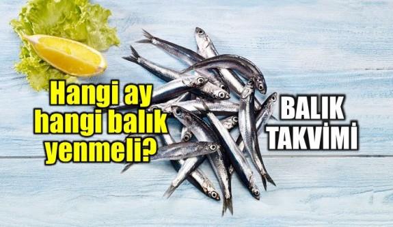 Hangi ayda hangi balık yenir?