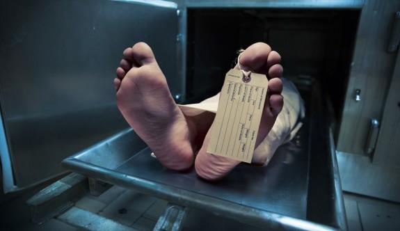 Ölü bedeniyle ilgili ilginç araştırma