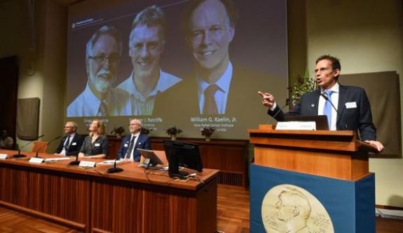 2019 Nobel Tıp Ödülü'nü kazananlar açıklandı