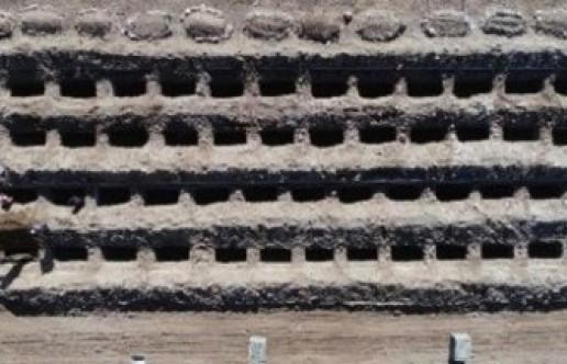800 kişilik mezar yeri kazdılar