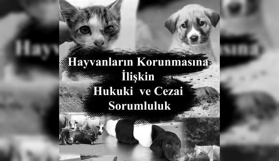 Final Üniversitesi'nden hayvanların korunmasına ilişkin hukuki inceleme