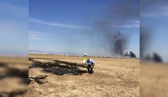 Yakılan anızlarla doğal hayatta yanıyor