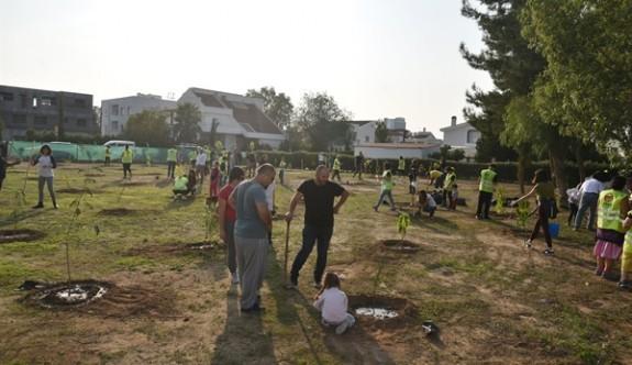 """Kıbrıs'a 300 Bin Ağaç Grubu""  fidan dikimine başladı"