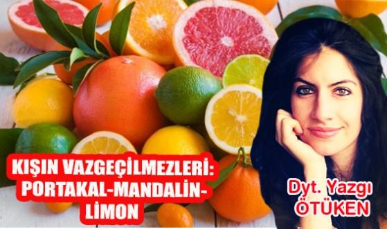 Kışın vazgeçilmezleri: Portakal-mandalin-limon