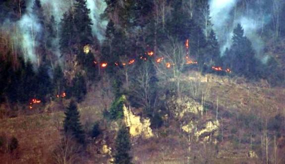 Karadeniz'deki 58 orman yangınından 45'i kontrol altında