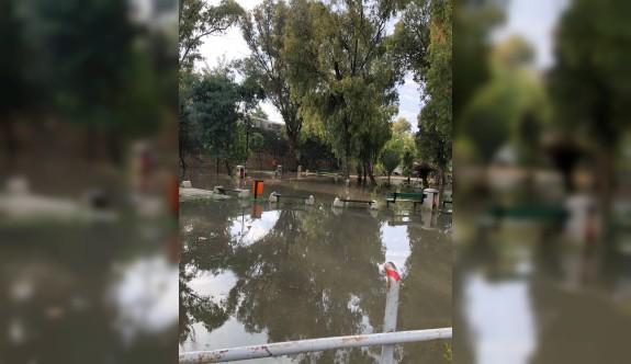 Kuğulu Park oldu sulu park