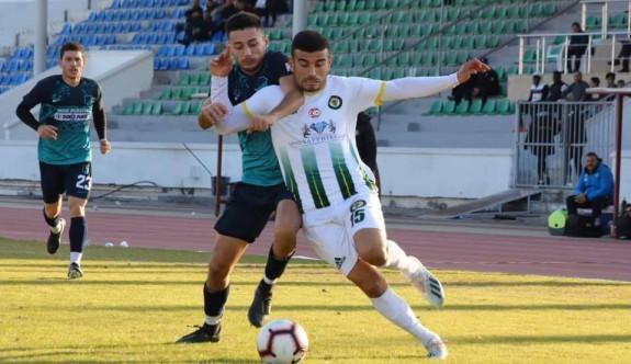 Mehmet Erol, dörtledi