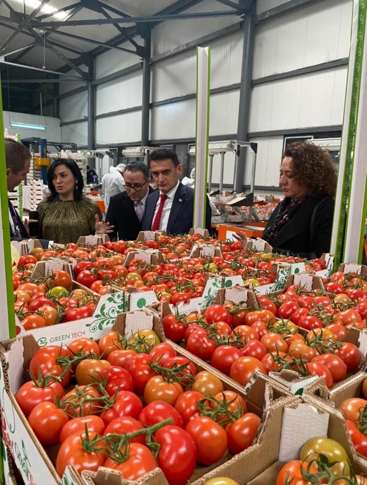 Oğuz'dan  Azerbaycan'da tarımsal inceleme