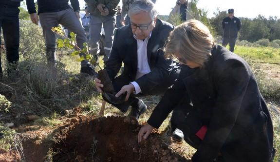 """""""Güzel adamızda orman ve ağaç fakiriyiz"""""""