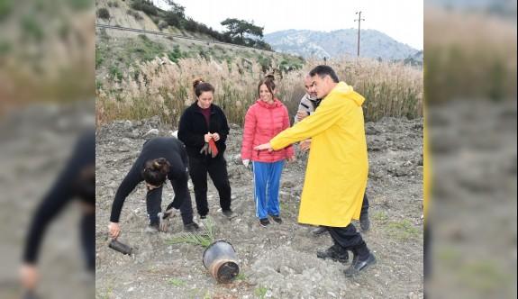 Geçitköy Baraj Bölgesi güzelleştiiliyor