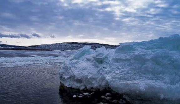 Sibirya'da Buzul Çağı'ndan kalma keşif