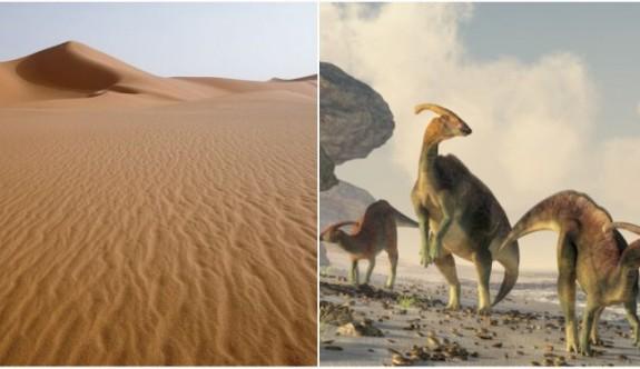 Dev Su Canlılarından Dinazorlara Sahra Çölü