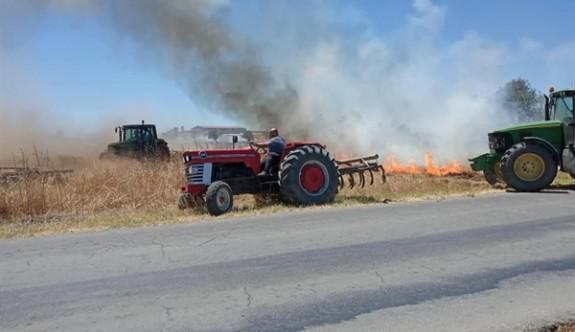 Paşaköy'de 10 zeytin ağacı ve buğday tarlası yandı