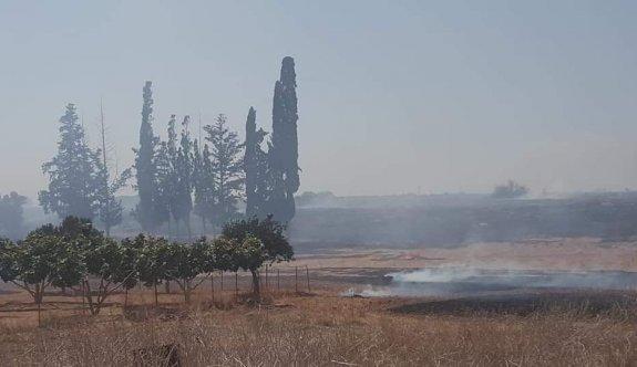 Beyarmuda bölgesinde üç farklı yerde yangın