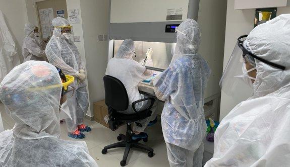 YDÜ'de uygulamalı COVID-19 PCR Akademisi