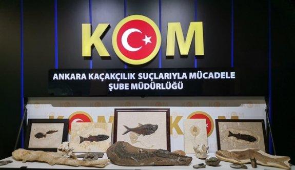 Adnan Oktar örgütüne fosil operasyonu