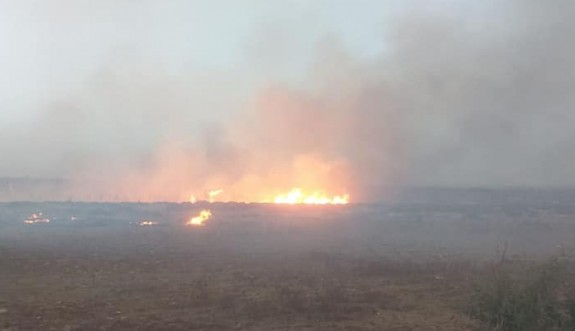 Akdoğan -Beyarmudu arasında arazi yangını