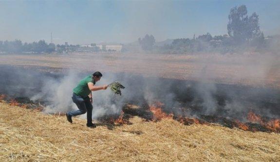 Alayköy ve Düzova'da arazi yangını