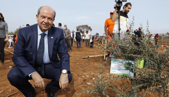 Erdoğan açıkladı: Maraş'a ağaçlandırma yapılıyor