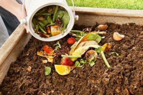 Bitkilerinizi coştukça coşturacak gübre tarifleri!