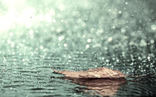 En çok yağış Yeşilırmak'a düştü