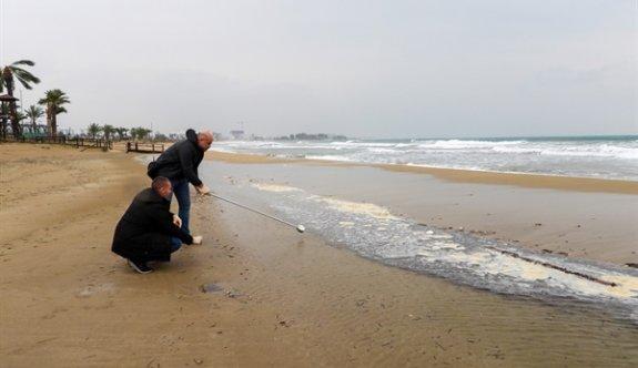 İskele Halk Plajı'nın deniz suyu tahlilinde kirliliğe rastlanmadığı açıklandı