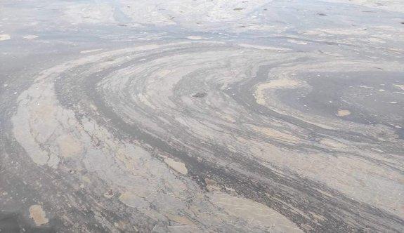İzmit Körfezi'nde kimyasal kirlilik