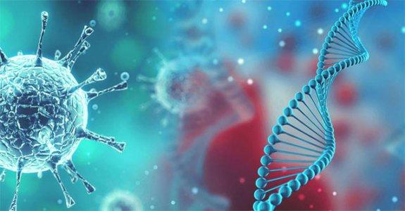 Yakın Doğu Üniversitesi, COVID-19 tanısı konan her hastaya mutant virüs analizi yapacak