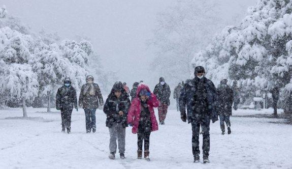 Yunanistan'da kar iki can aldı
