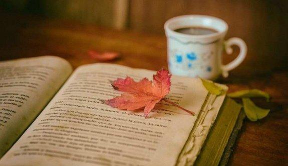 Her satırında duygularınızın kabaracağı efsane aşk romanları