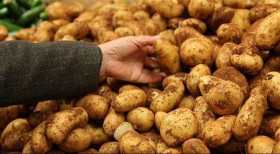 Patates ihracatına yönelik destek verilecek