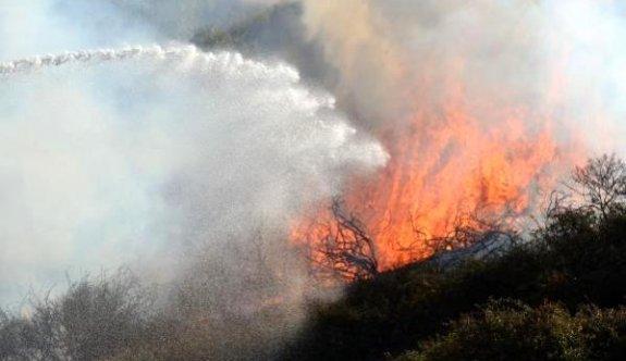 İki Dere bölgesinde büyük yangın