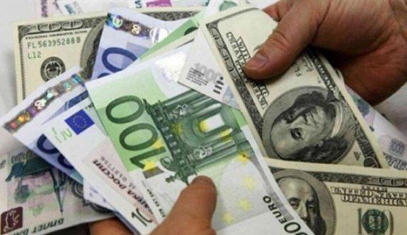 Türkiye'de döviz mevduatları 2 haftada 11 milyar dolar eridi