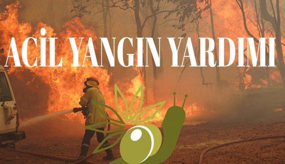 Geçitklae bölgesinde büyük yangın