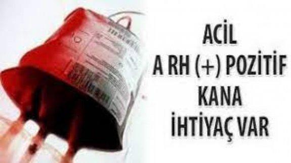 Acil A+ kan aranıyor