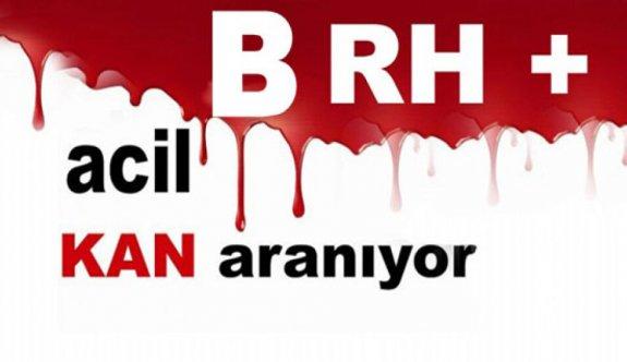 Acilen B RH + Kan aranıyor