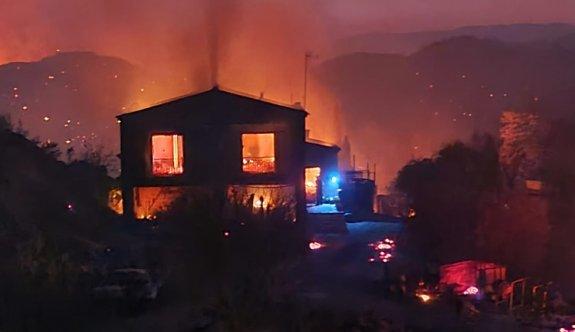 Büyük yangında yaklaşık 50 kilometrekarelik alan yandı