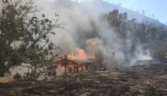 Güney'deki yangında 9 köy zarar gördü