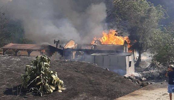 Güney'deki büyük yangın can aldı
