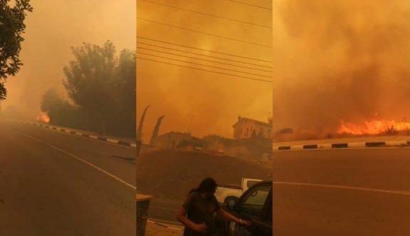 Güney Kıbrıs'ta büyük yangın