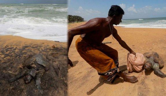 Hint Okyanusu'nda yüzyılın en kötü felaketi