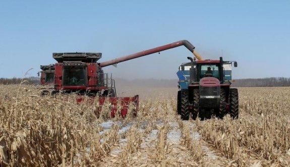 Kanada'da son 20 yılın en kurak dönemi