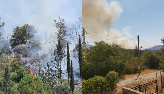 Limasol'un Pera Pedi bölgesinde yangın çıktı