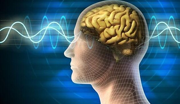 Sağlıklı beyin için 11 öneri