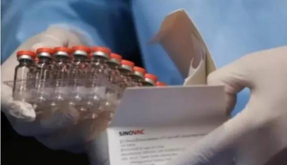 Türkiye Halk Sağlığı Genel Müdürlüğü'nden Sinovac aşısı açıklaması
