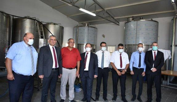 İhtiyaç fazlası 250 ton zeytinyağı, Türkiye'ye ihraç ediliyor