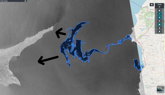 Karpaz ve Mağusa kıyıları ekolojik felaketin eşiğinde
